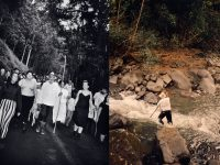 Klaus Biesenbach Uncovers Papo Colo's Artistic Legacy in Puerto Rico's Rainforest