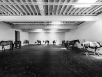 Gavin Brown's enterprise bids farewell to its West Village Gallery with Jannis Kounellis