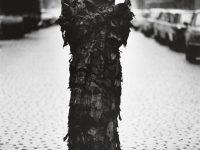 Sibylle Bergemann: A Spectre in East Berlin