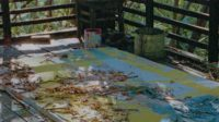 Vivian Suter sculpts her own meaning out of landscape painting