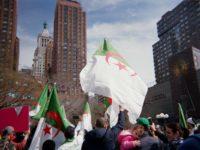 'Viva L'Algerie!': Amidst political turmoil in Algeria, New Yorkers speak out