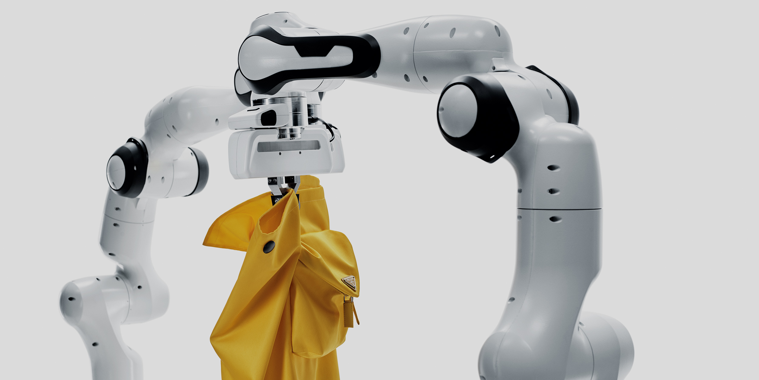 The human future